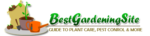 Best Gardening Site